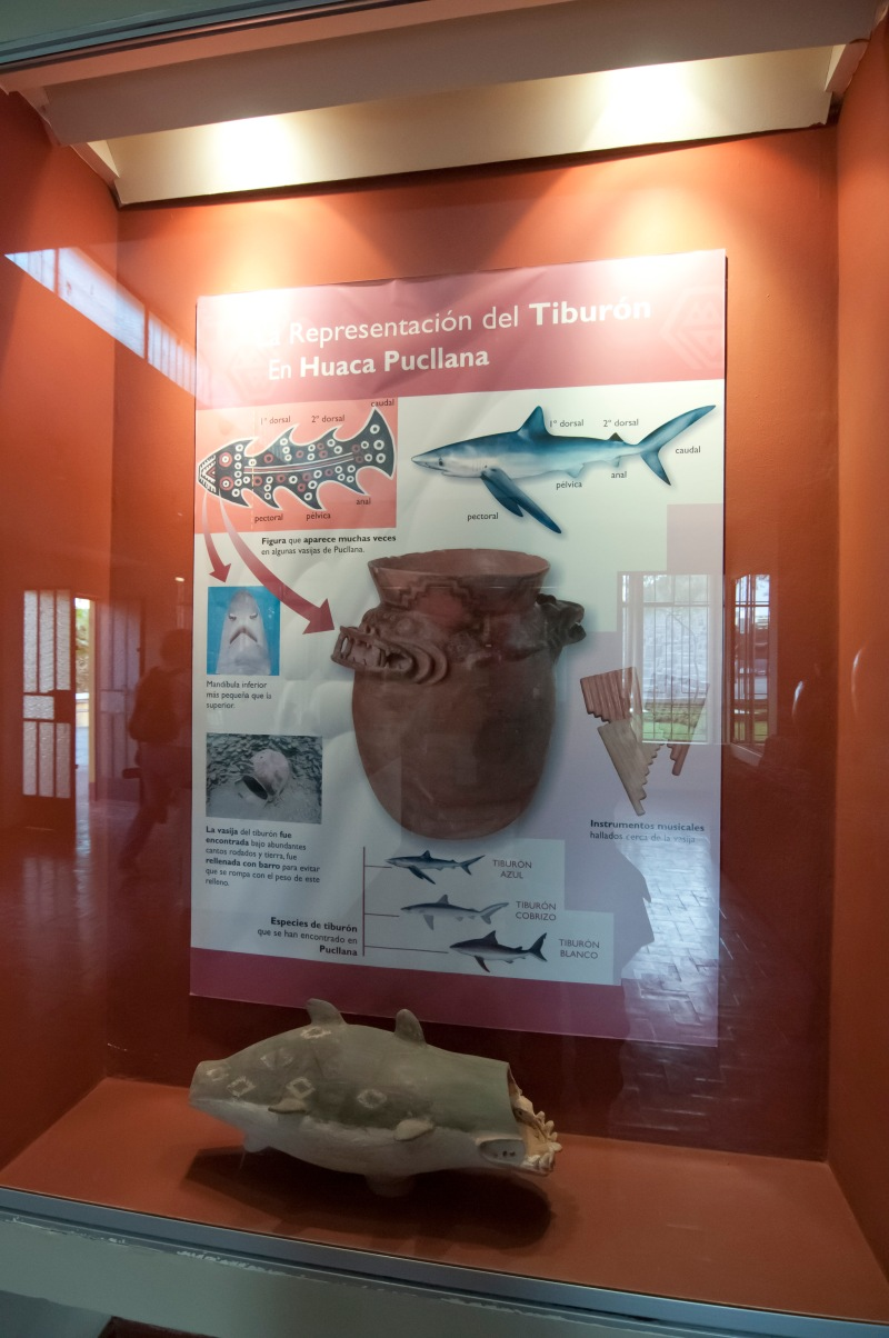 出土的陶器大都有魚的圖案,說明海洋在當地文明的重要性