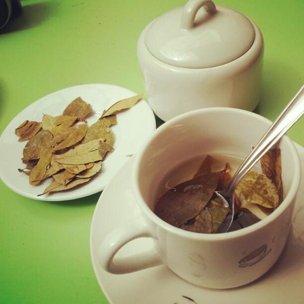 酒店及餐廳一般都有coca tea 供應
