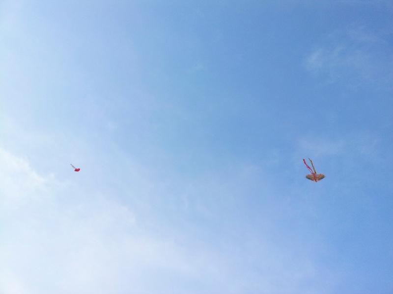 在廣場上有人在放風箏